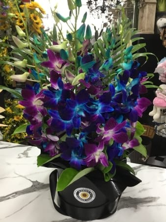 Double orchid hat box arrangement pink and blue