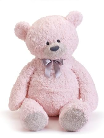 Forever my teddy Jane  bear pink