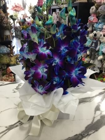 Blue orchid boxed arrangement