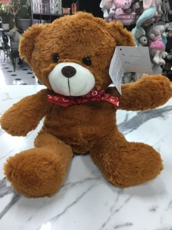 brown heart ribbon teddy 22cm