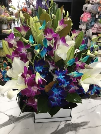 Orchid and oriental boxed arrangement