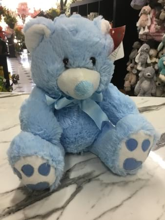 new baby teddy pink or blue